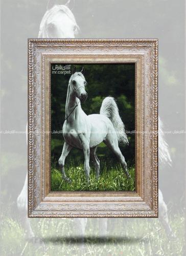 اسب سفید 0.68*0.50 تبریز