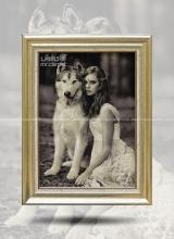 دختر و گرگ