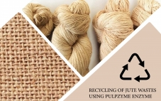 RECYCLING OF JUTE WASTES USING PULPZYME ENZYME